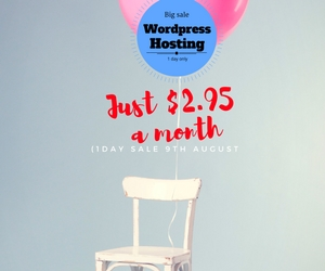 the 2.95 deal cheapest webhosting