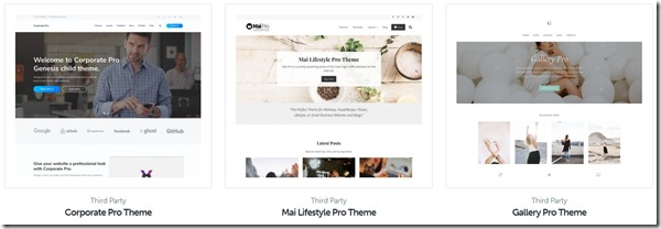 corporate mai lifestyle and gallery pro themes